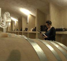 Viticulture : les grands crus du Château de Vaux déménagent à la Villa Chazelles